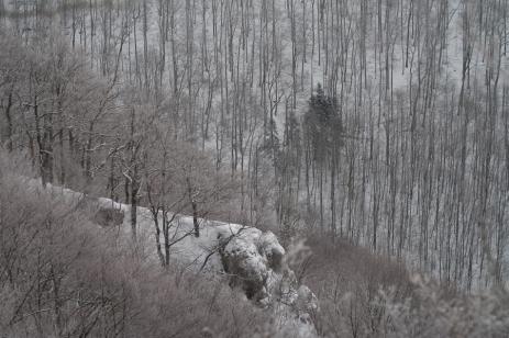 Winter_Jan11-17