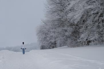 Winter_Jan11-7