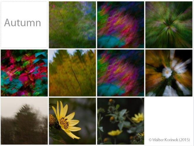 Herbstbilder