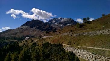Alp Grüm - Engadin