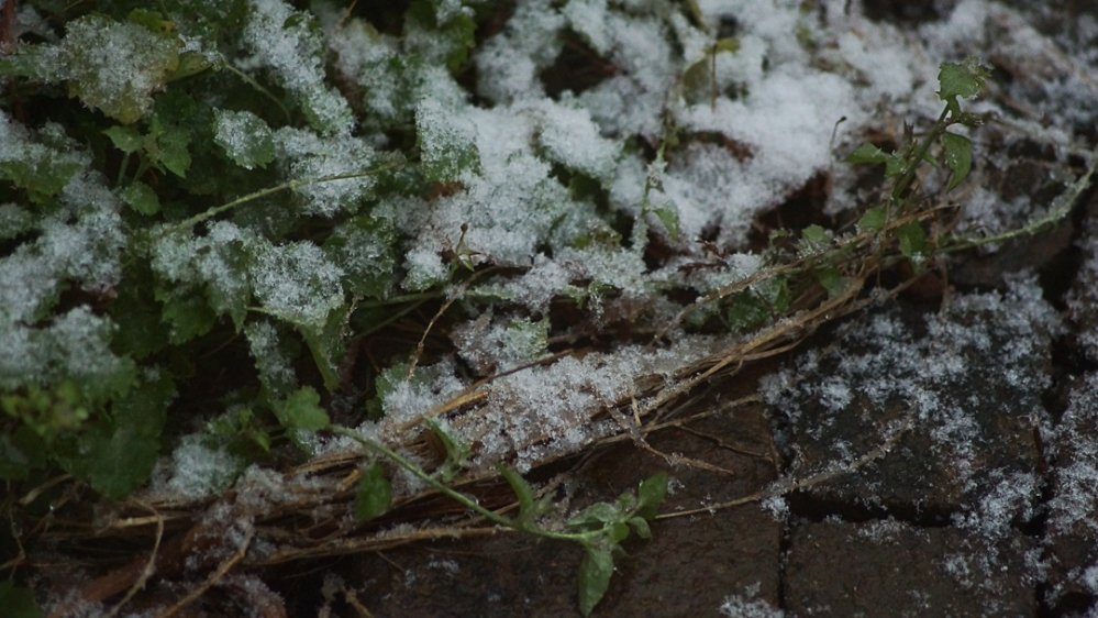 winter-12